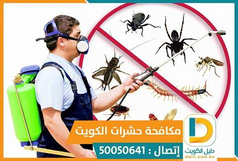 رقم شركة مكافحة حشرات بالكويت 50050641