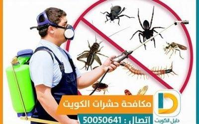 هل تحتاج شركة حشرات 50050641