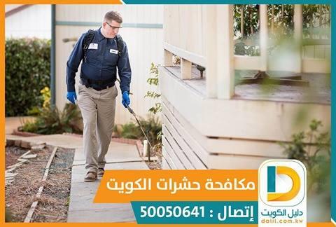 جل الصراصير الامريكي في الكويت 50050641