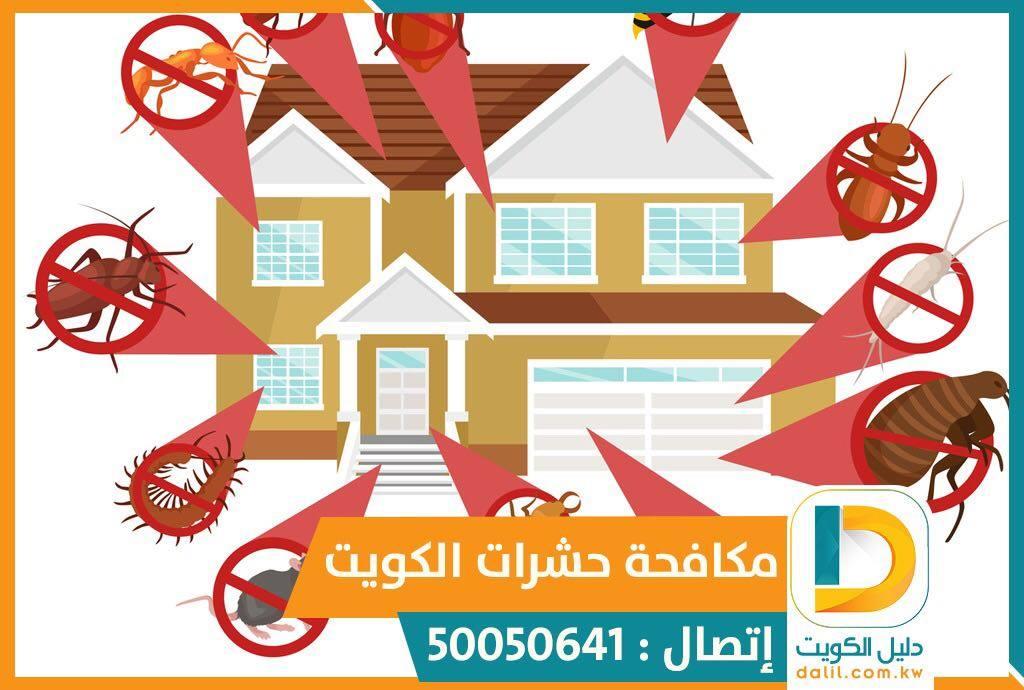 ابادة الحشرات الطائرة والزاحفة بالكويت 50050641