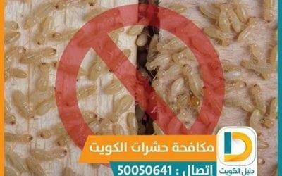 مكافحة الحشرات المنزليه بالكويت 50050641