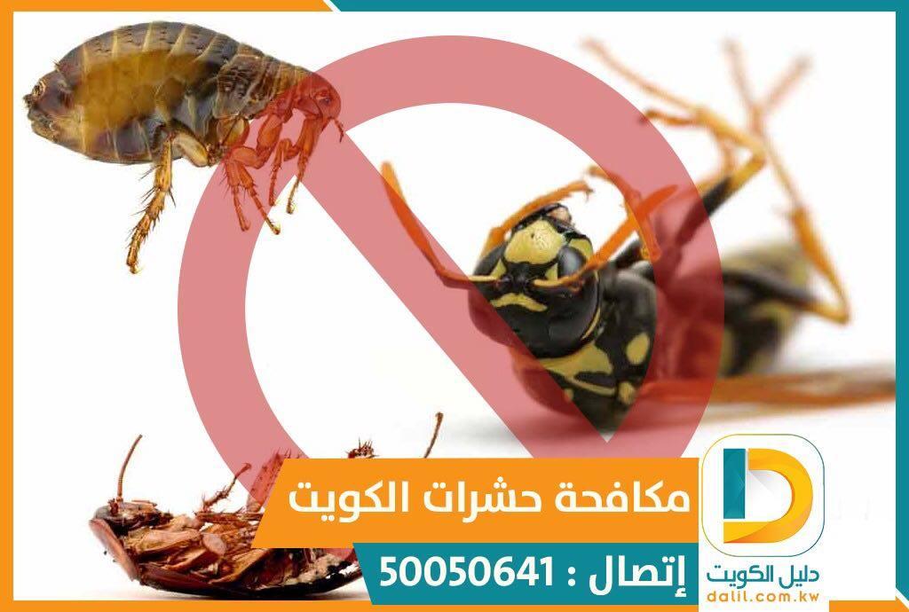 شركة مكافحة البق بالكويت 50050641